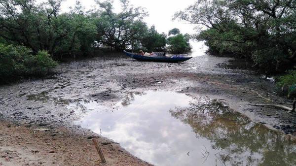 Description: Người dân neo đậu ghe thuyền để sinh hoạt dưới những tán rừng nguyên sinh - Ảnh: LÊ TRUNG