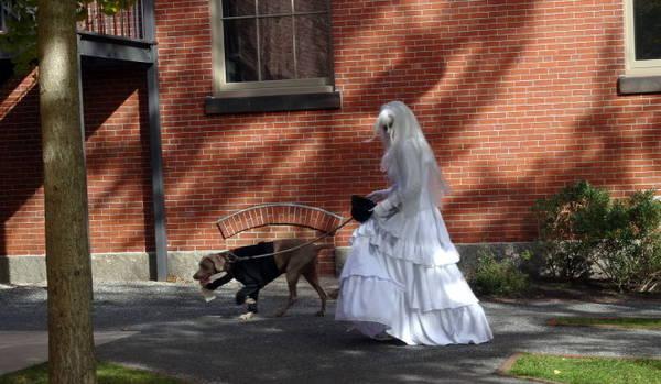 Hình ảnh quen thuộc trong mùa Halloween ở thành phố phù thủy Salem - Ảnh: wp