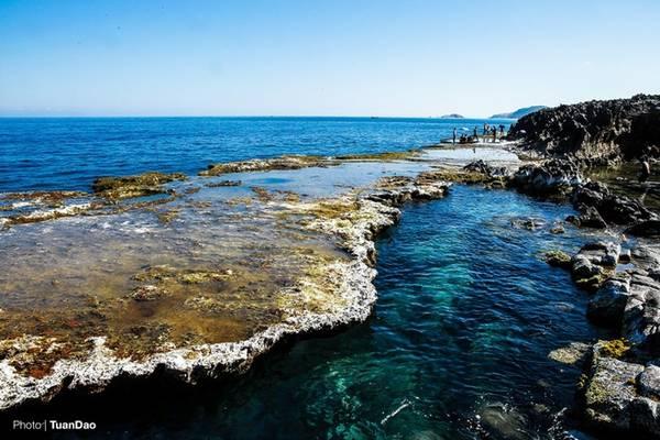 Ngoài ra, Hang Rái còn độc đáo bởi có rạn san hô cổ vào hàng lớn nhất Việt Nam, luôn ẩn hiện dưới những đợt sóng biển.