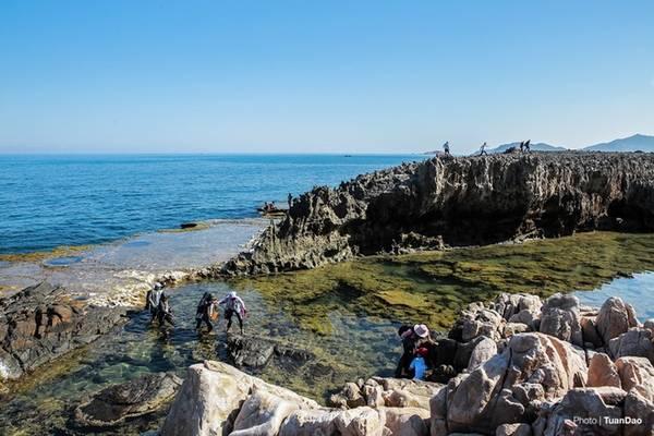 Đường ra bãi san hô cổ khá khó khăn, du khách phải đi đường vòng qua các tảng đá, để từ đó xuống được tận nơi. Hoặc có thể đứng trên phiến đá ngắm nhìn toàn cảnh biển cả bao la.