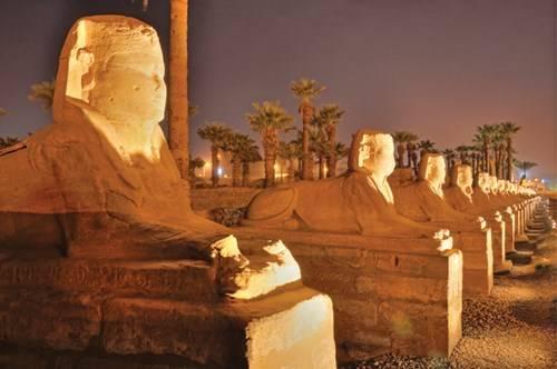 Hàng tượng nhân sư ở Luxor