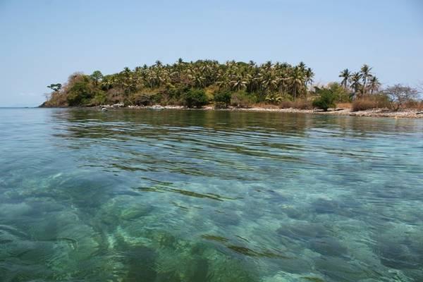 Description: Trước khi về bạn nên tham gia lặn ngắm san hô tại hòn Hai Bờ Đập. Đây là nơi có những rạn san hô đẹp nhất quần đảo Nam Du với những loài cá nhiệt đới đầy màu sắc.
