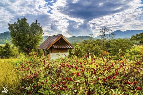 Khung cảnh tuyệt đẹp của Pai. Đây là một thị trấn nhỏ, xinh xắn và lãng mạn nằm ở phía Bắc tỉnh Mae Hong Son,, cách Chiang Mai khoảng 146km về phía Tây Bắc.