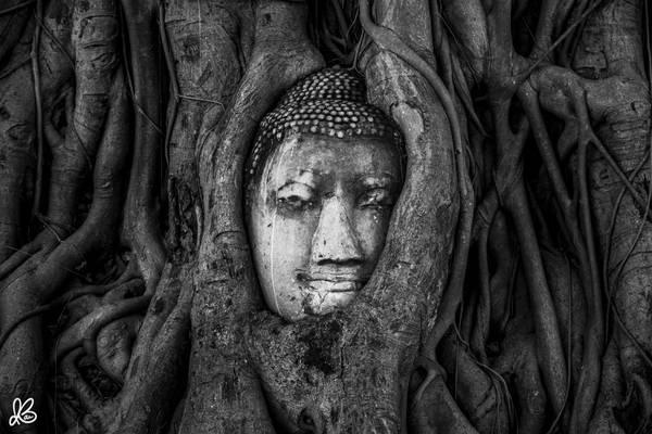 Hình ảnh khiến nhiều du khách tới Ayutthaya ấn tượng chính là hình mặt phật được bao bọc trong rễ cây ở chùa Wat Mahathat tạo thành một bức tranh sống động và lạ kỳ.