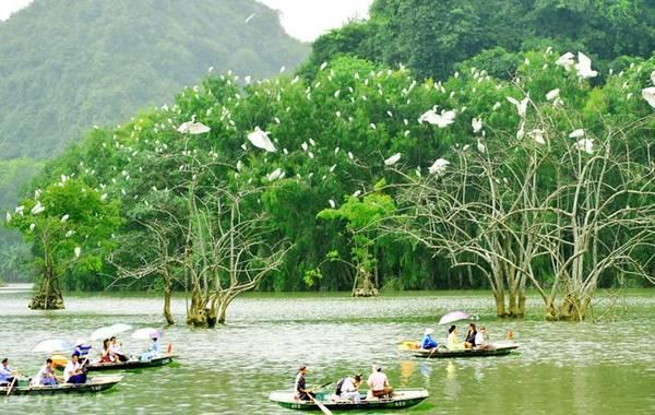 Vườn chim Thung Nham: Vườn Chim Thung Nham nằm ở xã Ninh Hải, huyện Hoa Lư, là một trong những điểm du lịch hội tụ đầy đủ các yếu tố văn hóa, tâm linh, cảnh quan và đa dạng sinh học. Bên cạnh cảm giác thú vị khi ngồi trên thuyền, chiêm ngưỡng khu đầm, du khách còn được khám phá cuộc sống hoang dã của gần 40 loài chim với khoảng 50 ngàn con.Ảnh: 123phuot.com