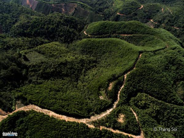 Đồi nối ở tỉnh Đắk Nông - Ảnh Lê Thế Thắng
