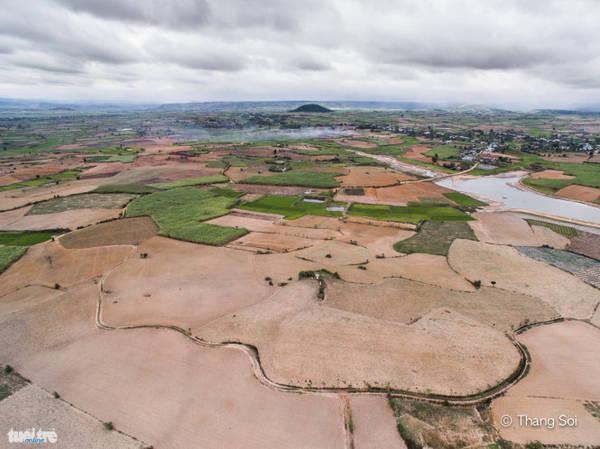 Cánh đồng ở thị xã An Khê, Gia Lai - Ảnh Lê Thế Thắng