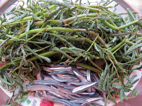 Nguyên liệu để chế biến món canh cá cơm nấu với rau giút - Ảnh: Minh Kỳ