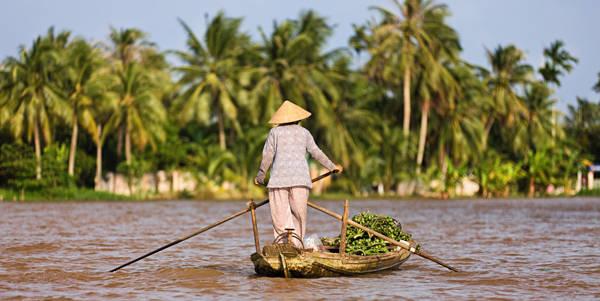 4. Đồng bằng sông Cửu Long: Khu vực ở Tây Nam bộ, nơi sông Mekong chảy qua, hay còn thân quen với người Việt bởi tên gọi miền Tây sông nước, là một trong những điểm đến thú vị trong mắt khách nước ngoài. Ngay gần TP HCM, họ có thể di chuyển tới các tỉnh như Cần Thơ, Vĩnh Long, Bạc Liêu... để cảm nhận cuộc sống nông thôn miền Nam trên những ghe thuyền, chợ nổi, bên những kênh rạch cùng nhiều loại hoa quả phong phú.