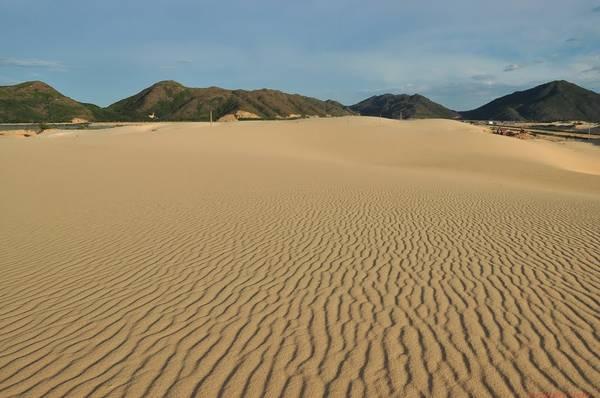 Đồi cát Phương Mai. Ảnh: hongky