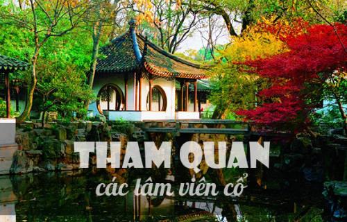 Khu vườn như bước ra từ phim cổ trang Trung Quốc.
