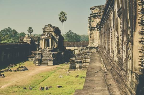 Phía bên hông đền Angkor. Toàn bộ quần thể kiến trúc với những tháp, đền đài, phù điêu và hành lang mênh mông đều làm từ đá tảng, xếp chồng lên nhau nhìn rất tự nhiên, ngay cả ở trên nóc vòm. Họa tiết trang trí bằng đá như tượng Phật, vũ nữ, chiến binh và những hình hoa sen minh họa sử thi Ramayana và Mahabharata đều rất sống động, mềm mại.