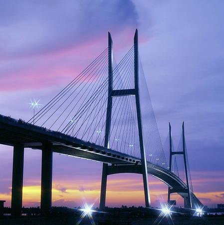 Cầu Mỹ Thuận lung linh trong đêm. Ảnh: ST