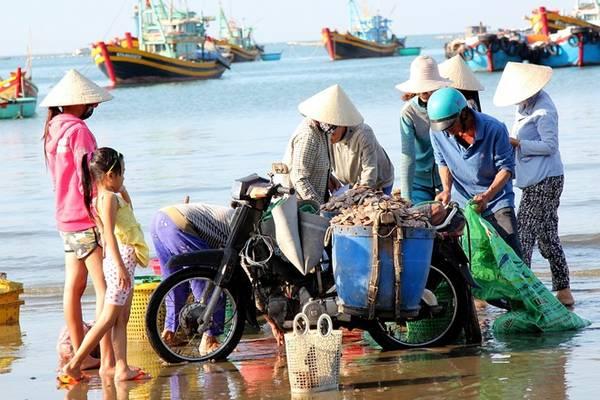 Thu mua hải sản ngay tại chỗ. Ảnh: Zen Nguyễn