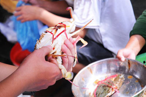 Nếu mua về làm quà, bạn hãy nhờ người bán đóng thùng ướp lạnh kỹ, chỉ mất hai tiếng từ Đồ Sơn về Hà Nội nên chắc chắn người thân sẽ có hải sản tươi ăn ngay trong ngày. Ảnh: Vi Hồ.
