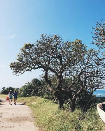 Đến đảo Bé, bạn sẽ tìm thấy một thế giới mới lạ lẫm và mải mê lang thang khắp nơi, thích thú ngắm nhìn cảnh vật. Ảnh:duonghoang.19