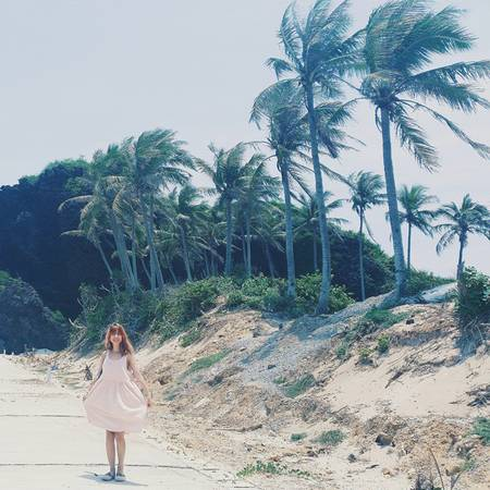 Những con đường xuyên đảo dẫn ra bãi biển phía sau cũng như đường liên thôn giờ đã được bê tông hóa. Hai bên đường trên đảo là những rặng dừa xanh ngát, trông vô cùng lãng mạn. Ảnh:sunnychixd