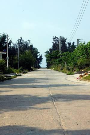 Một con đường trên đảo Ngọc Vừng. Ảnh: Phuot HD