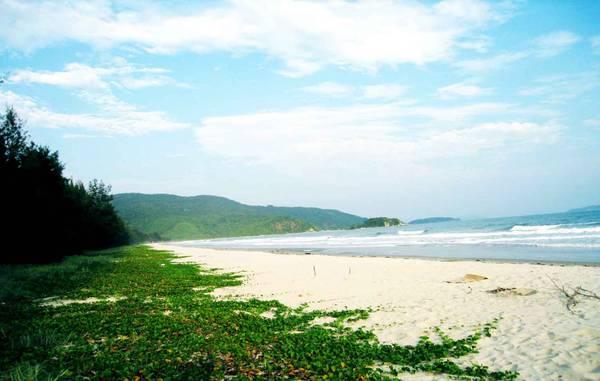 Description: Bãi biển ở đây rất hoang sơ và hầu như chưa có sự can thiệp của các dịch vụ du lịch.  Ảnh: ST