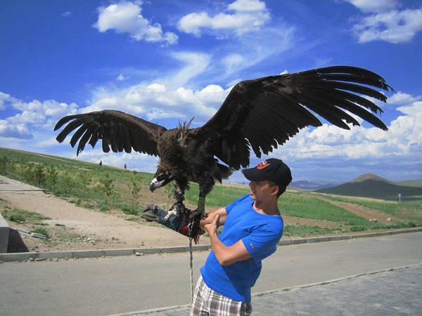 Thầy giáo môn du lịch chụp hình lưu niệm cùng đại bàng ở Mông Cổ