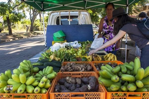 Thực phẩm trên đảo rất đắt, đặc biệt ở các nhà hàng phục vụ khách du lịch. Chúng tôi phải đi chợ và tự nấu ăn để tiết kiệm chi phí và có thể nấu những món ăn có hương vị quê nhà. Mỗi buổi sáng, trung tâm thị trấn đều có những xe bán tải chất đầy rau củ quả để phục vụ cho người bản xứ và một ít khách du lịch.