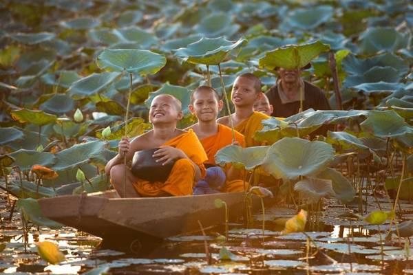Những đứa trẻ Thái Lan giữa đầm sen.