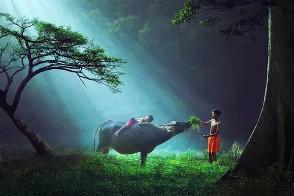 Khoảnh khắc hồn nhiên, vô tư của những đứa trẻ ở Indonesia.