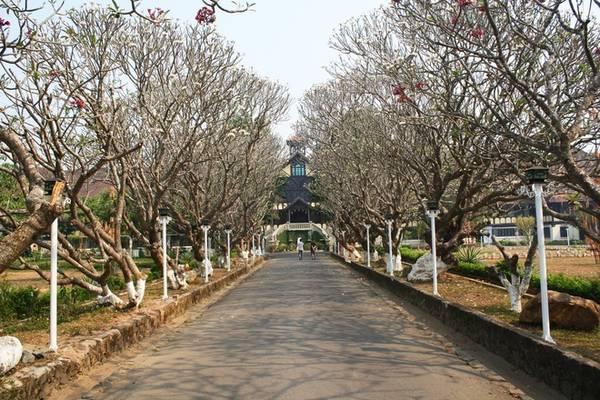 Con đường dẫn vào tòa giám mục Kon Tum – một trong những công trình tiêu biểu tại thành phố cao nguyên này. Tòa giám mục được xây dựng từ năm 1936, mang lối kiến trúc phương Tây kết hợp với nét văn hóa bản địa Tây Nguyên.