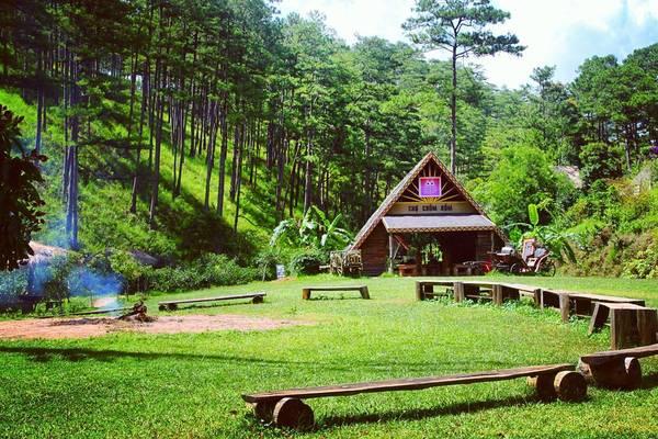 Làng Cù Lần nhỏ xinh, nằm nép mình trong một cánh rừng nguyên sinh, dưới chân cao nguyên Lang Biang thơ mộng. Ảnh: chinchlorine