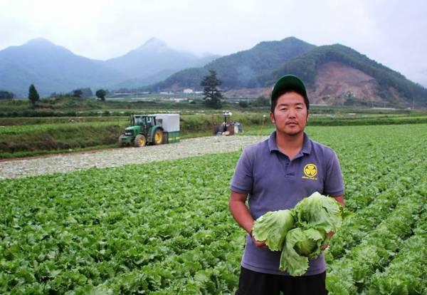 """Ngôi làng trồng rau xà lách sạch được áp dụng theo công nghệ nổi tiếng của làng Kawakami Mura, huyện Minamisaku, tỉnh Nagano Nhật Bản.Ảnh: FB """"Làng thần kỳ"""" Đà Lạt"""