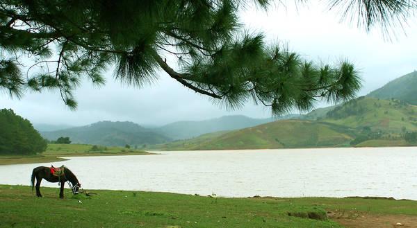 Hồ Suối Vàng. Ảnh: dulich24