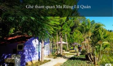 nhung-trai-nghiem-khong-the-bo-qua-dip-304-tai-da-lat-ivivu-5