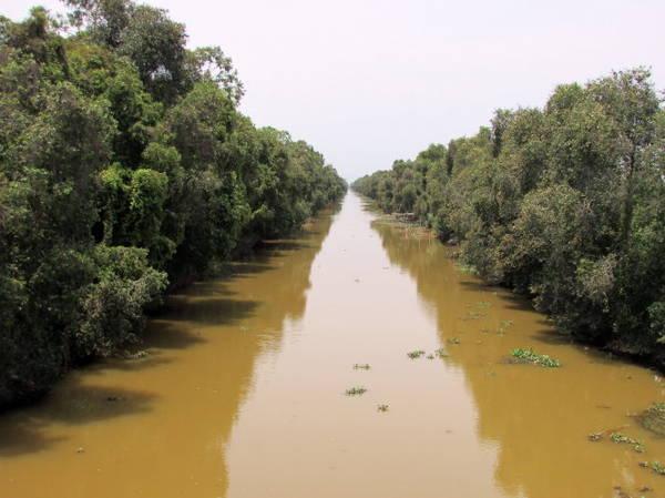Một trong nhiều con kênh ở Thạnh Tân, những con kênh dài thẳng tắp với tràm dày đặc hai bên bờ - Ảnh: N.T.Đăng