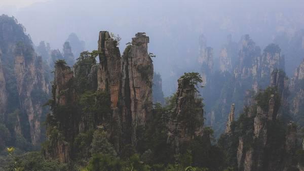 Ảnh:Nguyễn Trường Sơn