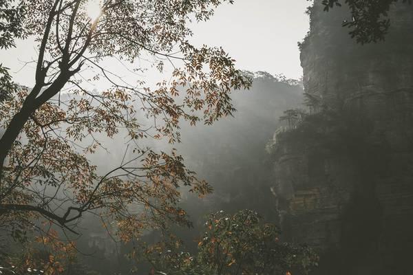 Khung cảnh như thực như mơ ở Trương Gia Giới. Ảnh:Nguyễn Trường Sơn