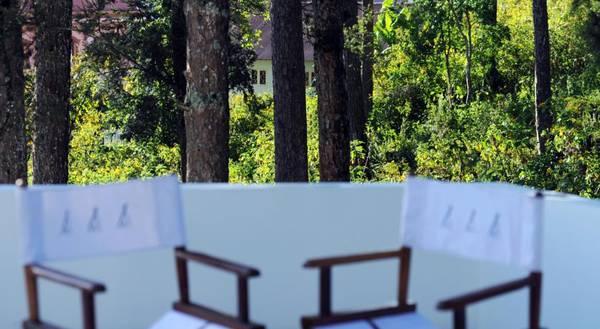 Bên cạnh phòng hướng ra vườn hoa, khách sạn còn có phòng hướng ra đồi thông.