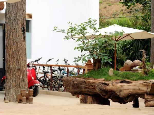 Khách sạn cũng có dịch vụ cho thuê xe đạp miễn phí khi lưu trú tại đây.