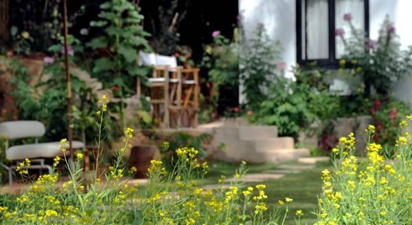 Còn gì thú vị hơn khi bạn được đắm mình trong ly cafe thơm, ngắm hoa trong khu vườn bí mật và tự do, thoái mái cảm nhận Đà Lạt theo cách của bạn tại Stop And Go Hotel.