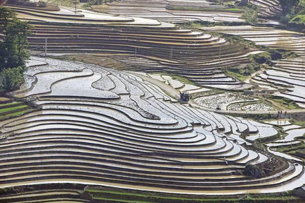 Vẻ đẹp ruộng bậc thang được các chính người nông dân tạo nên