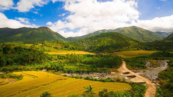 Cuối năm cũng là thời điểm đáng để bạn lên đường vì những ngày đầu đông là lúc ruộng bậc thang khoác lên mình sắc vàng của lúa chín, là mùa của hoa sở, lễ mừng cơm mới và nhiều điều thú vị khác.Ảnh: Minh Sơn/Vietnam+