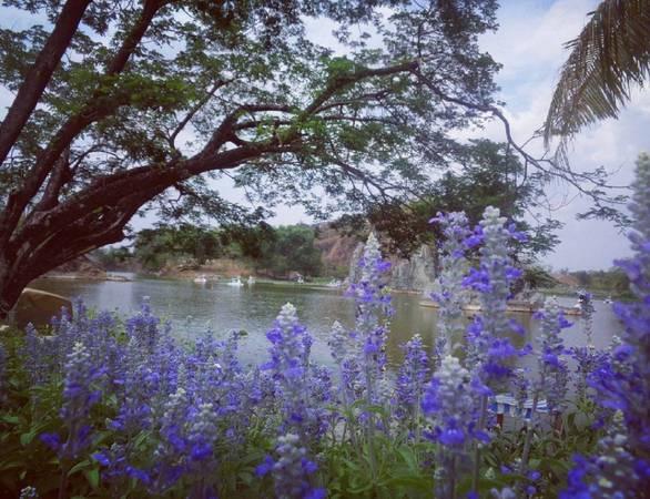 Thoát khỏi những ồn ào phố thị thường ngày, đến đây bạncó thểthư giãn trước hồ nước xanh biếc hoặc ngồi trên thuyền thiên nga đi dạo quanh hồ. Nếu không, bạn có thể nhàn nhã xem những ngọn núi nhỏ quanh hồ, mỗi góc của thiên nhiên của khu vực này được gọi là thung lũng của tình yêu. Ảnh:@kykfrv