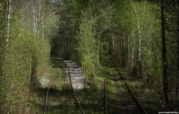 Con đường là hình ảnh đẹp nhất về sáng tạo của tự nhiên, kết hợp ăn ý với công trình nhân tạo.