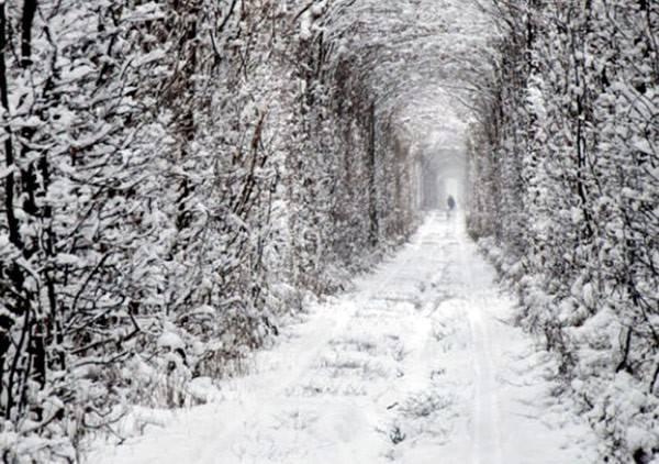 """Vào mùa đông, những trận tuyết rơi sẽ biến nơi đây trở thành một vương quốc tuyết trắng xóa như trong chuyện cổ tích. Chính vì thế, người dân địa phương gọi đây là """"Đường hầm của tình yêu""""."""