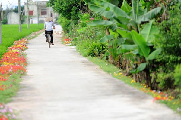Chặng đường về nhà của những người dân cũng trở nên ngắn hơn khi luôn được ngắm nhìn vẻ đẹp của thiên nhiên, cây cỏ.