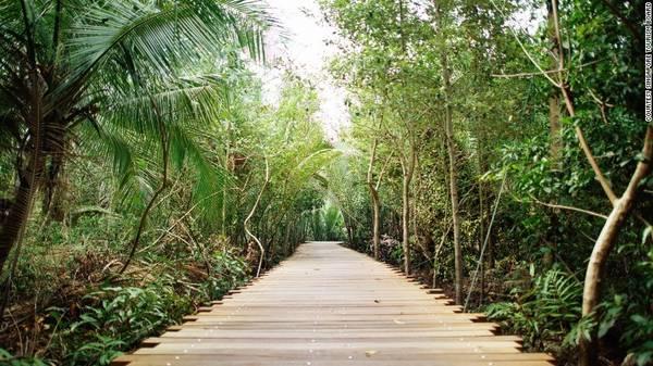 Pulau Ubin, Singapore: Với hệ sinh thái trù phú và độc đáo, hòn đảo nhỏ này chỉ cách đất liền khoảng 10 phút đi thuyền. Nơi đây có ngôi làng truyền thống cuối cùng của Singapore, với nhịp sống chậm rãi, thanh bình. Du khách có thể khám phá ẩm thực địa phương, tìm hiểu thế giới biển, ngắm nhìn các loài chim hay đạp xe vượt núi.