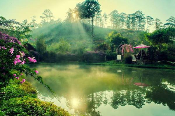 Soi bóng bình minh ở Ma Rừng lữ quán - Ảnh: Cao Cát