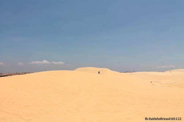 Vẻ đẹp tự nhiên hoang sơ của đồi cát Bàu Trắng còn làm say lòng những ai muốn đi tìm cảm hứng nghệ thuật. Dân nhiếp ảnh thường đến Bàu Trắng vào mùa hè sen nở, lúc 5-9h và 16-18h, vì cho rằng đó là những thời khắc mà tuyệt tác thiên nhiên ở đây hiển hiện vẻ đẹp rõ nhất.