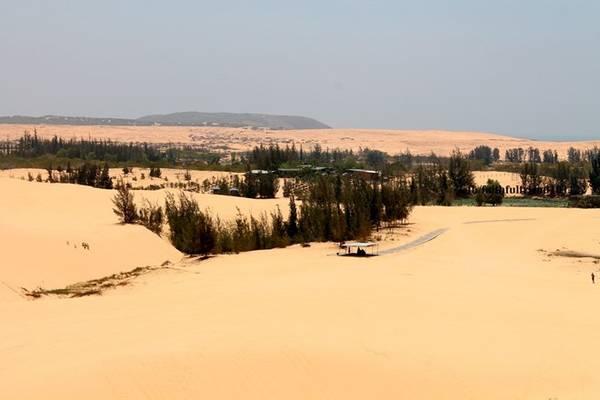Đồi cát Bàu Trắng đang dần trở thành điểm đến không thể bỏ qua trong hành trình đến Bình Thuận của đông đảo du khách.