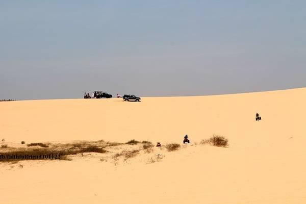 Cảnh tượng du khách tung hoành trên đồi cát đầy nóng bỏng nhưng không kém phần cuốn hút, hấp dẫn.