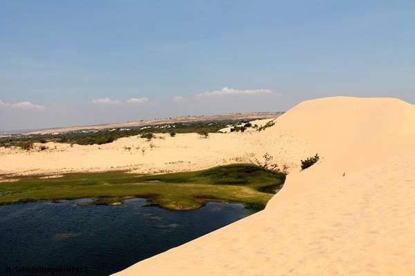 Sau đó, hãy ngồi thuyền lênh đênh trên mặt hồ để trải nghiệm toàn bộ cảm giác tuyệt diệu khi đặt chân đến nơi đây. Đắm mình trong hương sen thơm ngát giữa không gian yên bình, bạn sẽ cảm nhận hết vẻ đẹp của sa mạc và ốc đảo.